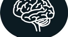 What Happens to the Brain During Cognitive Dissonance? - Scientific American