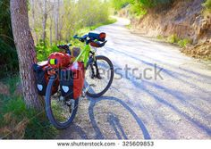 MTB Bicycle touring bike in a pine forest with pannier racks and saddlebag