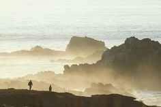 How to See One of the Pacific Coast's Most Dramatic Locations: Point Lobos: Point Lobos Headlands in the Afternoon Big Sur California, Carmel California, Monterey California, California Coast, California Travel, Northern California, Carmel By The Sea, Carmel Valley, Dream Vacations