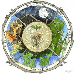 "Nature ed ""phenology Wheel"", JanetMoore. Thanks Janet for a great weekend of Artistry and Forestry."
