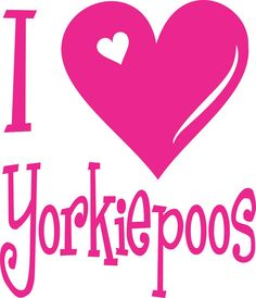I Love Yorkiepoos  Decal  Design 2 by PurpleCafe on Etsy, $2.99