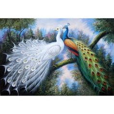 Beautiful White and Blue Peacocks Oil Painting 24 x 36