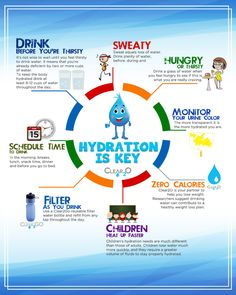 HYDRATION IS KEY...CLEAR2O Water Filter Pitcher, Filtered Water Bottle, Water Pitchers, Drinking Water, Saving Money, How Are You Feeling, Key, Feelings, Drinks