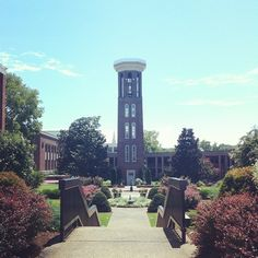 Belmont University is my dreams school. I have already gotten in, but I most likely won't be able to afford it. I want to continue to push myself to apply for more scholarships in the hopes that I can go here.