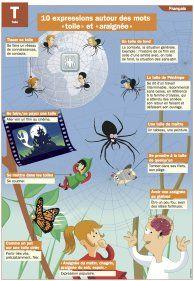 """Autour des mots """"toile"""" et """"araignée"""" - Mon Quotidien, le seul site d'information quotidienne pour les 10 - 14 ans !"""
