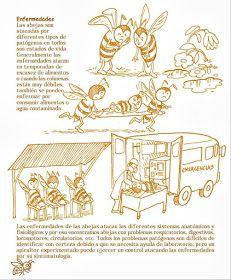 La Familia de la Apicultura - The Beekeeping of Family: Manual Apícola Ilustrado - Beekeeping Illustrated Manual. Drone Bee, Beekeeping For Beginners, Bee Boxes, Bee Farm, Backyard Beekeeping, Bees Knees, Queen Bees, Bee Keeping, Organic Recipes