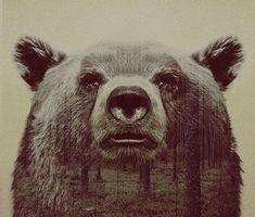 » Mágicos Retratos de Doble Exposición que Fusionan Animales Salvajes con Paisajes