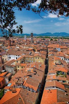 Lucca - Italy