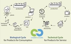 Biological and technical cycle are the basis of C2C  how its work and why is this great? #Cradle_to_cradle #createrrablog