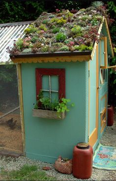 roof on chicken coop awesome living roof on chicken coop.awesome living roof on chicken coop. Chicken Coop Designs, Gallus Gallus Domesticus, Chicken Garden, Herb Garden, Chicken Coup, Living Roofs, Living Walls, Hen House, Down On The Farm