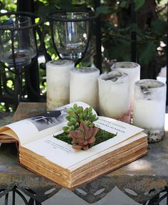 Succulent Book Planters http://www.handimania.com/diy/succulent-book-planters.html