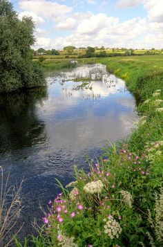 River Nene at Hardwater Crossing, Northamptonshire