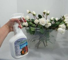 Floral Supply - Quick Dip Flower Rehydrator