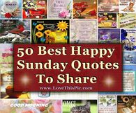 50 Best Happy Sunday Quotes To Share