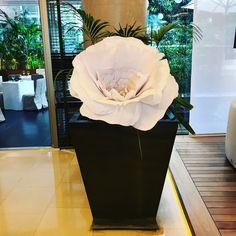 Macetas XXL. Flores de papel. @arte.minerva
