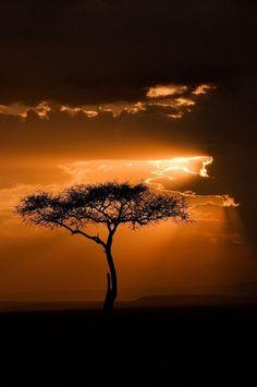 Sunset in Masai Mara, Kenya