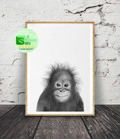 Baby Orangutan Print, Nursery Wall Art, Baby Safari Animal Print, Black and White, Baby Monkey Print, Baby Animal Poster, Orangutan Photo by SiriiMirri on Etsy