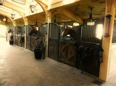 Nice stable with skylights