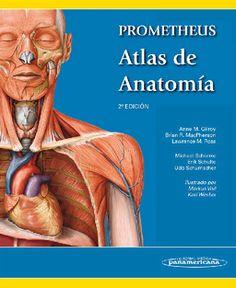"""Atlas de anatomía : Prometheus. 2a ed."" / autores: Anne M. Gilroy, Brian R. MacPherson, Lawrence M. Ross ; ilustraciones: Markus Voll, Karl Wesker. Buenos Aires [etc.] : Editorial Médica Panamericana, cop. 2013. Matèria :Anatomia humana. #nabibbell"