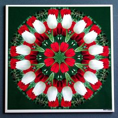 Tulip mandala kaleidoscope ceramic tile floral by RVJamesDesigns, $9.95