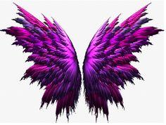 wings by Billi