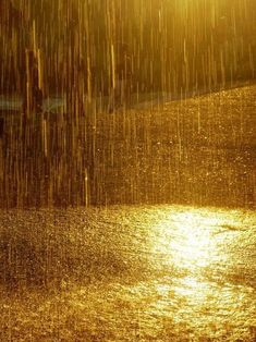 Gold Aesthetic, Aesthetic Colors, Aesthetic Pictures, Apollo Aesthetic, Sound Of Rain, Singing In The Rain, I Love Rain, Photos Originales, Foto Art