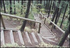 Douglas Fir Trail in Calgary, Alberta-been there!!