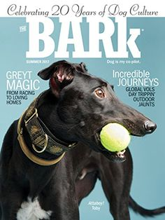 The Bark - The Bark delivers a smart mix of health, behavior and activities; plus invaluable news and entertaining stories. Hailed the coolest dog magazine ever, its renowned experts/writers probe the delights of dogs. As its slogan - Dog is My Co-Pilot - proclaims, it is the indispensable guide to life wit...