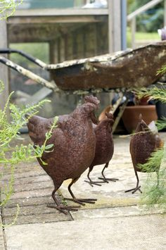 Rustic rusted  garden chickens