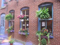 I loved this store front - The Purple Cow - in Easton, PA.  Gorgeous flowers.