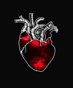 Animated gif shared by María José. Find images and videos about gif, vida and heart on We Heart It - the app to get lost in what you love. Corazones Gif, Neon Light, Foto Gif, Anatomical Heart, Human Heart, Heart Wallpaper, Beautiful Gif, Gif Pictures, Aesthetic Gif