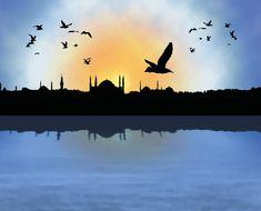 İstanbul Silüeti ve Martılar [PSD-AI File]