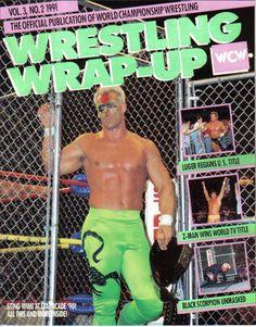 Wrestling Wrap-Up February 1991