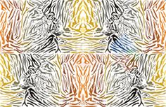 Vector brown and black tiger atterns and camouflage horizontal background