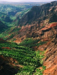 The Surreal Allure of Kauai, Hawaii's Greenest Isle #PinUpLive