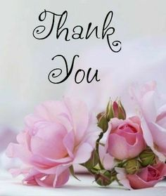 Thank You Messages Gratitude, Thank You Wishes, Thank You Greetings, Happy Wishes, Happy Wedding Anniversary Wishes, Birthday Wishes Quotes, Happy Birthday Messages, Birthday Greetings, Thank U Cards