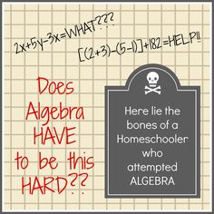 Algebra Helps - I'm using Real World Algebra to guide a learner who prefers a different approach to math lessons.  It would be great for a highly gifted mathematician who is ready to zip right through algebra concepts, too.