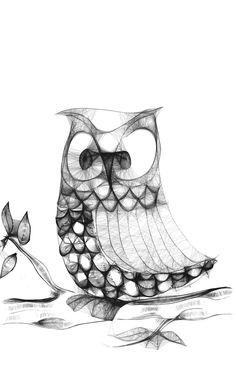 <3 Owls