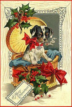 Mery Christmas....