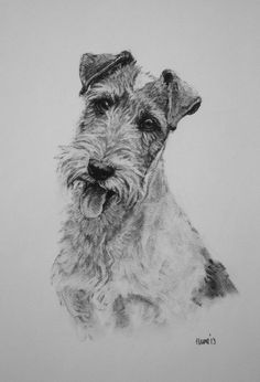 Wire Fox Terrier dog fine art Limited Edition print by Terrierzs