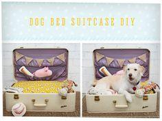Construye la cama de tu perro