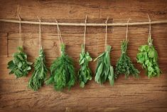Herbs and spices are jam-packed with health-promoting chemicals, and they have more antioxidants than most fruits and vegetables. Here are five herbs and spices that are especially great for fending off disease. Sea Vegetables, Freezing Vegetables, Growing Herbs, Medicinal Herbs, Healing Herbs, Back To Nature, Fresh Herbs, Herb Garden, Natural Remedies