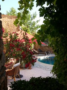 Le jardin provençal de Gilles