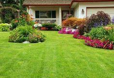 Gramado do jardim saudável e bonito em dez dicas