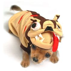 Zombie dog costume from Dog Bless You