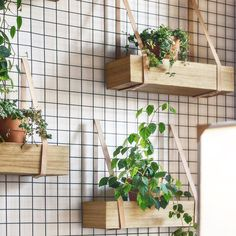 DIY Inspiration - Wood crates on the Wall with straps for herbs in the Kitchen diy garden design Główna Osobowa Bar and Restaurant in Gdyna, Poland by PB/STUDIO and Filip Kozarsk Diy Inspiration, Interior Inspiration, Kitchen Inspiration, Interior Ideas, Interior Decorating, Vertical Garden Design, Vertical Gardens, Small Balcony Design, Balkon Design