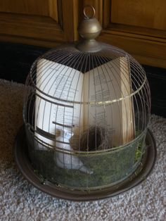 Small birdcage lined with green moss, vintage prayer book, ceramic bird with crown & real nest