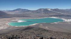 Esta laguna de Atacama destaca por su fuerte color verde | Foto galeria 1 de 6 | El Comercio Peru