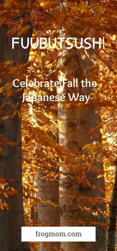 In Japanese, Fuubutsushi means all the things, feelings and memories that are connected to a season to come. Here is how to celebrate Fall the Japanese way.