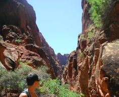 Hellhole Trail in the Red Cliffs National Conservation Area, Utah